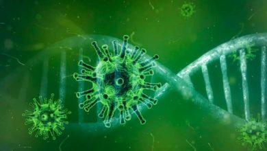 Photo of Hay dudas sobre la inmunidad contra el coronavirus
