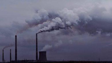 Photo of Francia, primer país en definir un ecocidio y castigarlo