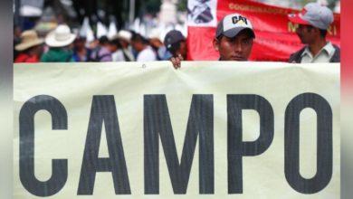 Photo of El Frente Auténtico del Campo bloquea el acceso a la Secretaría de Gobernación