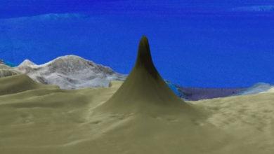 Photo of Encuentran arrecife de coral más alto que el Empire State