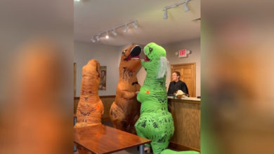 Photo of Se casan disfrazados de dinosaurios y su video se vuelve viral