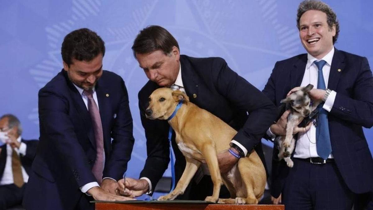 Bolsonaro firma con perro