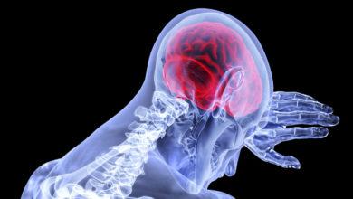 Photo of La ubicación física de la conciencia no está en el cerebro
