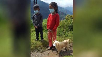Photo of Pequeños llevan a vacunar a su perro con cubrebocas