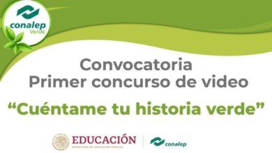Photo of Cuéntame tu historia verde con un video