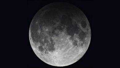 Photo of El eclipse que le da la despedida a noviembre, el ultimo del año en el hemisferio norte