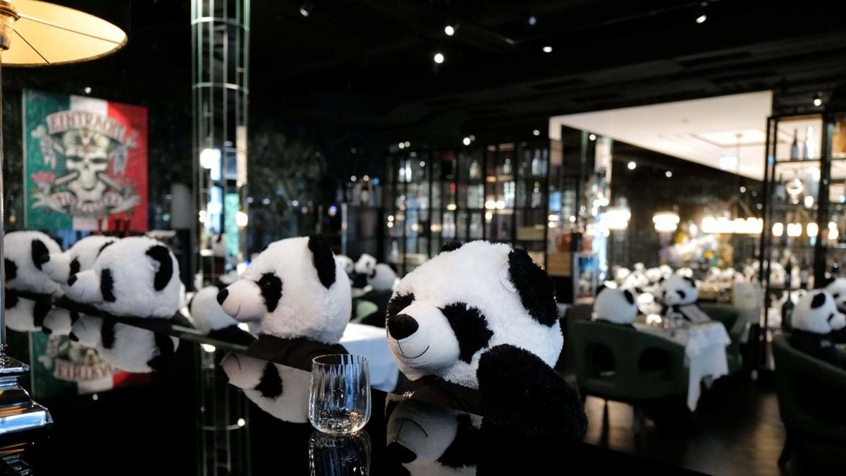 Protesta con pandas en restaurante