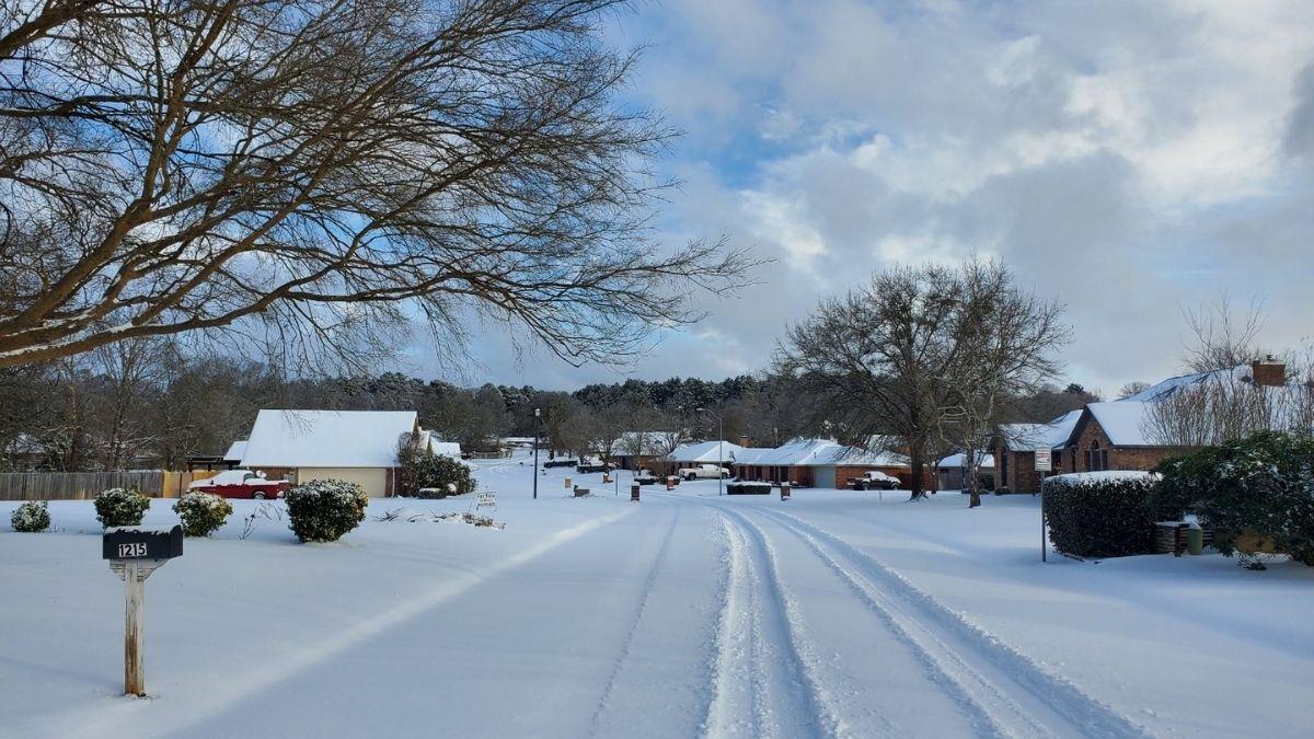 Texas nieve