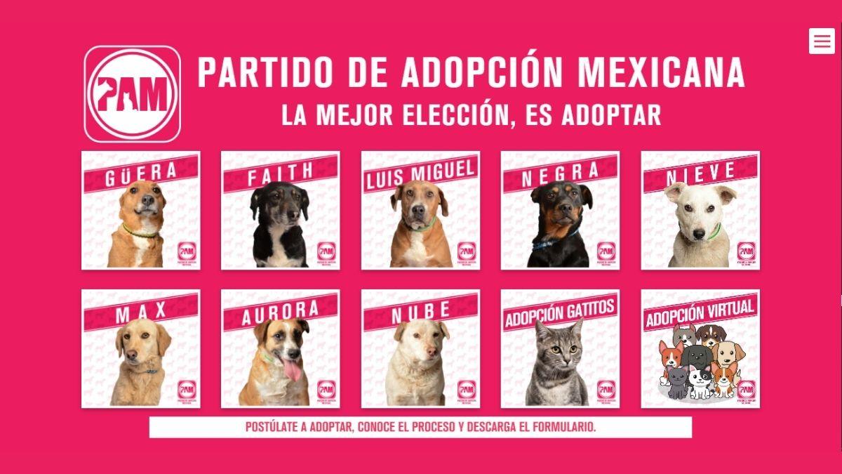 Partido de Adopcion Mexicana