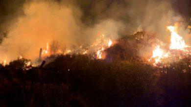 Incendio Sierra Tarahumara