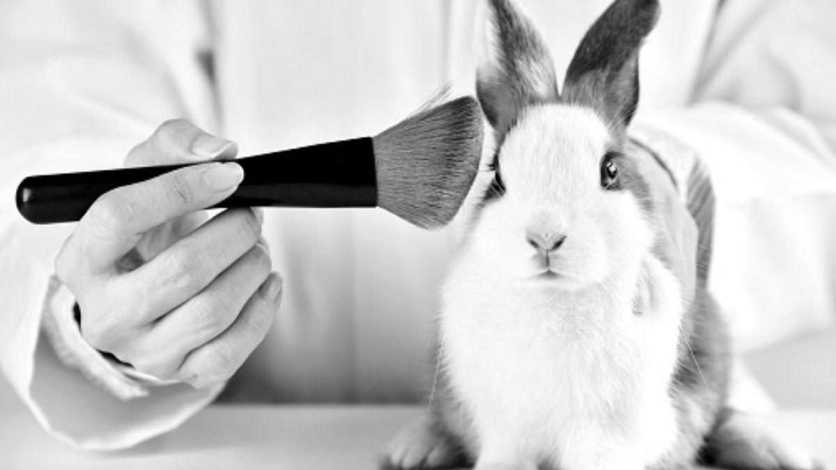 Pruebas cosmeticas animales