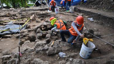 Vestigios arqueologicos tren Maya