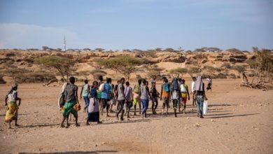 Migranes Cuerno de Africa